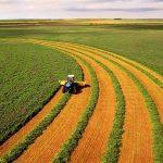 آشنایی با نکات و فرصت های سرمایه گذاری در کشاورزی
